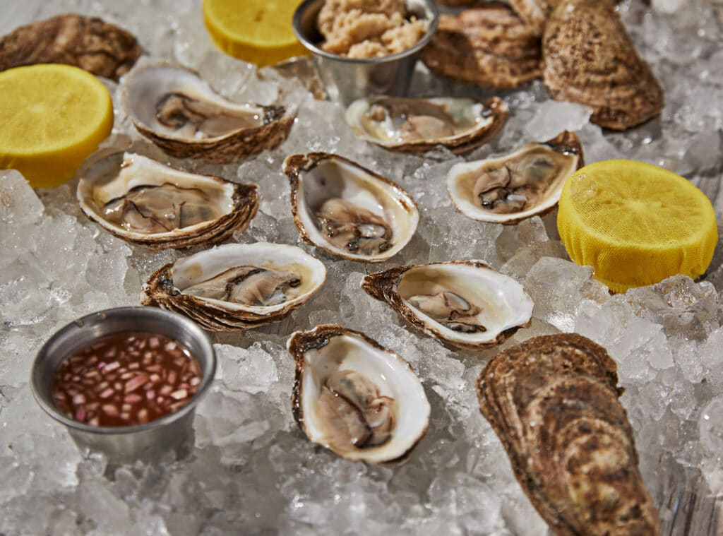 Get Reel Happy - Happy Hour Oysters